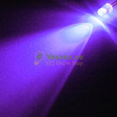 5mm LED Violett / UV 1500mcd  - 30°
